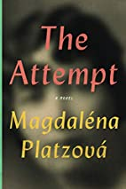 The Attempt by Magdaléna…