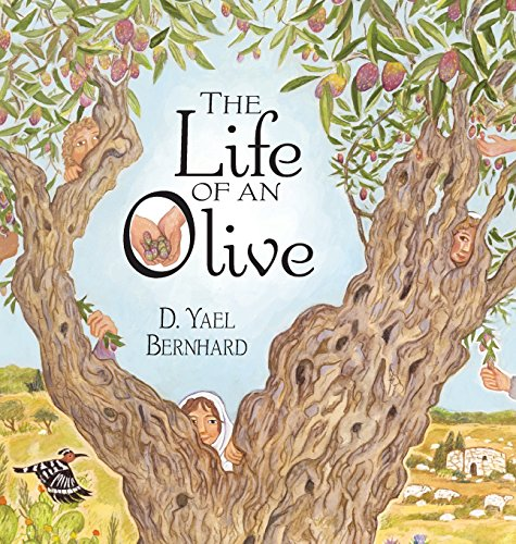 The life of an olive /
