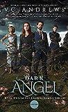 Dark Angel (2) (Casteel) af V. C. Andrews
