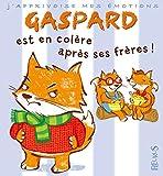 Gaspard est en colère contre ses frères!