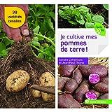 """Afficher """"Je cultive mes pommes de terre"""""""