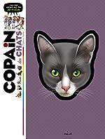 Copain des chats: Pour tout savoir sur ton petit félin - Stéphane Frattini