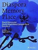 Diaspora memory place : David Hammons, Maria Magdalena Campos-Pons, Pamela Z / edited by Salah M. Hassan, Cheryl Finley