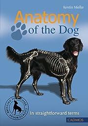 Anatomy of the Dog: In Straightforward Terms…