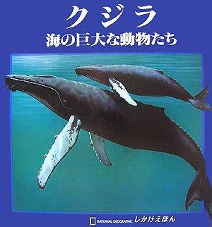 クジラ 海の巨大な動物たち