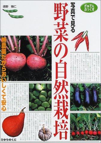 写真で見る野菜の自然栽培