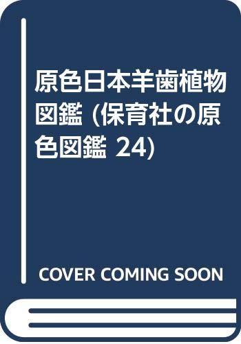 原色日本羊歯植物図鑑