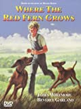 Where the Red Fern Grows (1974) (Movie)