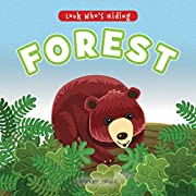 Look Who's Hiding - Forest : Pull The Tab…