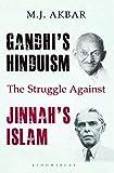 Gandhi's hinduism
