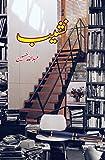 Nasheeb : novelette aur afsanay (نشیب : ناولٹ اور افسانے)