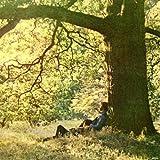 Yoko Ono / Plastic Ono Band (1970)