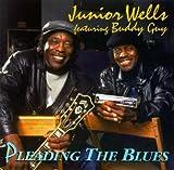 Pleading the Blues lyrics