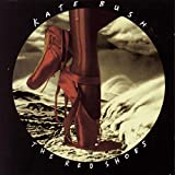 The Red Shoes / Kate Bush