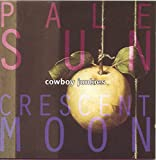 Pale Sun, Crescent Moon (1993)