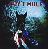 Gov't Mule (1995)