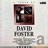 A Touch Of David Foster (1992)