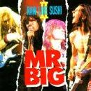 Raw Like Sushi, Vol. 2