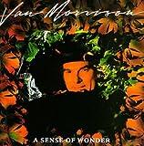 A Sense Of Wonder (1985)