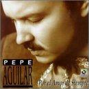 Me Estoy Acostumbrando a ti lyrics Pepe Aguilar