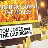 Burning Down the House lyrics