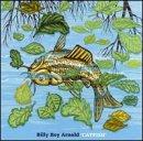 Catfish lyrics