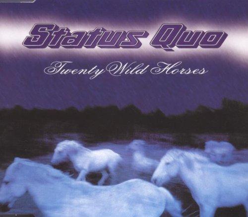 Twenty Wild Horses
