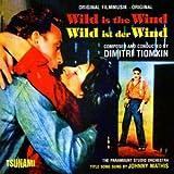 Wild Is the Wind lyrics