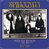 Burn the Bridges lyrics