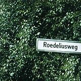 Roedeliusweg lyrics