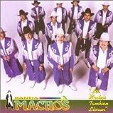 Los Machos Tambien Lloran lyrics