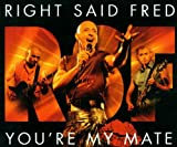 You're My Mate lyrics