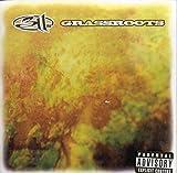 Grassroots (1994)