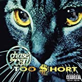 Chase the Cat
