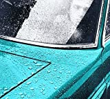 Peter Gabriel 1 (Car) (1977)