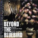 Beyond the Bluebird lyrics