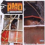 The Awakening (2003)