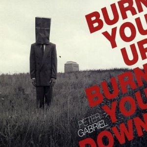 Burn You Up Burn You Down