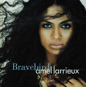 Bravebird Album