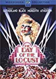 The Day of the Locust (1975) (Movie)