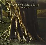 Synchestra (2006)