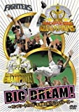 BIG DREAM! ~コンプリート2006北海道日本ハムファイターズ~