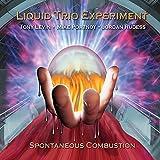 Spontaneous Combustion [Liquid Trio Experiment] (2007)