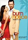 Burn Notice (2007 - 2013) (Television Series)