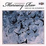 Hello Blackbird (2006)