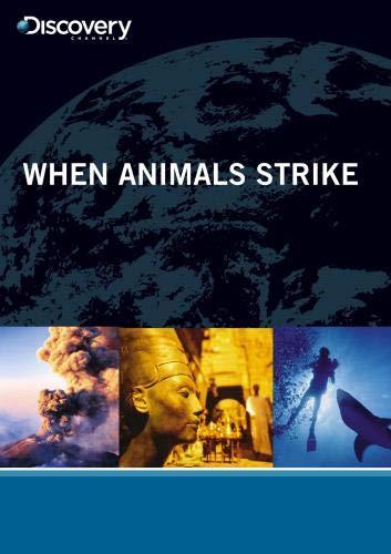 When Animals Strike