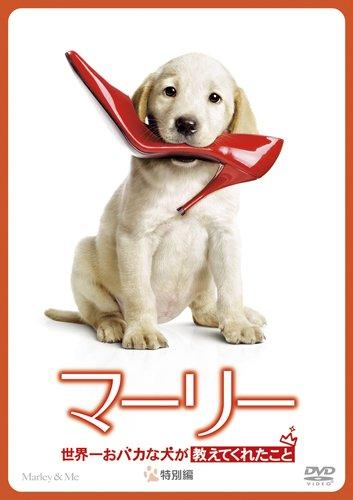 Amazon で マーリー 世界一おばかな犬が教えてくれたこと を買う