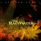 The Rainwater LP (2010)