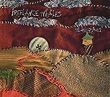 Weathervanes (Album) by Freelance Whales