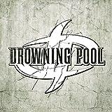 Drowning Pool (2010)